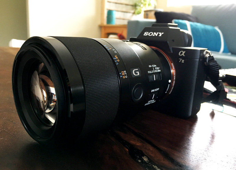 Sony a7ii and 90mm Macro G OSS Lens
